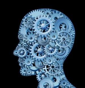 brain cogs (988x1024)